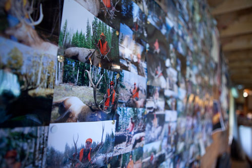 Elk hunting Colorado wall of pictures