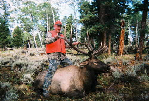 Elk hunting with Pierce Brothers Outfitters